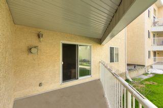 Photo 29: 7 10331 106 Street in Edmonton: Zone 12 Condo for sale : MLS®# E4246489