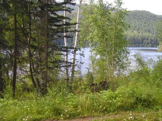 "Photo 5: LOT 13 EAGLE CREEK Road in Canim Lake: Canim/Mahood Lake Land for sale in ""HAWKINS LAKE"" (100 Mile House (Zone 10))  : MLS®# N226700"