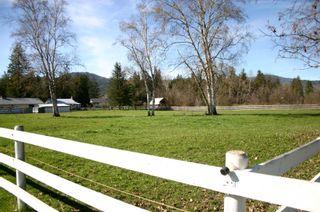 Photo 11: 21 McManus Road: Grindrod House for sale (Shuswap Region)  : MLS®# 10114200