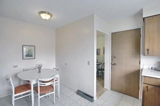 Photo 10: 1223 48 Avenue NW in Calgary: North Haven Detached for sale : MLS®# A1121377