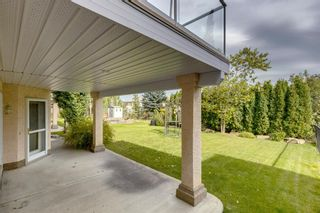 Photo 43: 223 Hampstead Way NW in Calgary: Hamptons Detached for sale : MLS®# A1148033