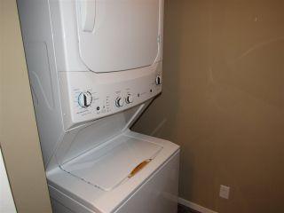 Photo 24: 213 5804 MULLEN Place in Edmonton: Zone 14 Condo for sale : MLS®# E4222798
