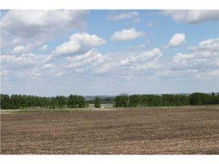 Photo 4: : Rural Foothills M.D. Land for sale : MLS®# C3619693