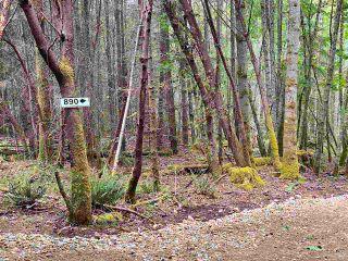 Photo 3: 890 EAGLES REST Lane: Galiano Island Land for sale (Islands-Van. & Gulf)  : MLS®# R2589986