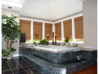 Photo 10: 27049 18 AV in Langley: Otter District House for sale : MLS®# F1445983