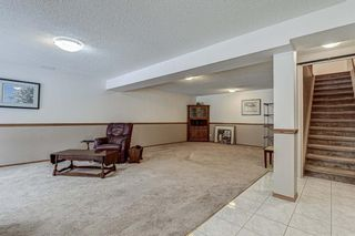 Photo 24: 53 Edgepark Villas NW in Calgary: Edgemont Semi Detached for sale : MLS®# A1059296