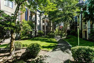 """Photo 13: 314 2615 JANE Street in Port Coquitlam: Central Pt Coquitlam Condo for sale in """"BURLEIGH GREEN"""" : MLS®# R2174335"""