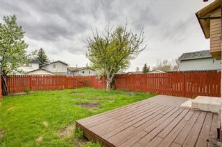 Photo 46: 23 SUNVALE Court SE in Calgary: Sundance Detached for sale : MLS®# C4297368