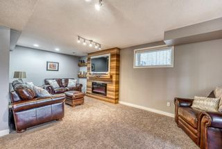 Photo 22: 10 Inverness Place SE in Calgary: McKenzie Towne Detached for sale : MLS®# A1095594