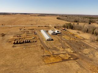 Photo 3: 47513 Highway 22: Rural Brazeau County Detached for sale : MLS®# A1060203