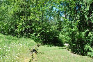 Photo 22: 4265 Eagle Bay Road: Eagle Bay House for sale (Shuswap Lake)  : MLS®# 10131790