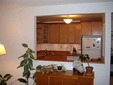 Photo 5: Photos: 203-924 Cook St in Victoria: Residential for sale (Fairfield)  : MLS®# 257887