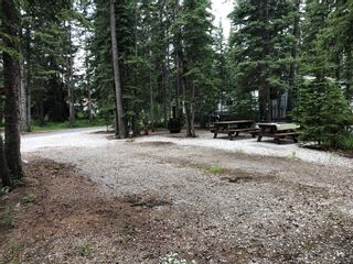 Photo 3: 13 Timber Alley: Rural Mountain View County Land for sale : MLS®# A1016491