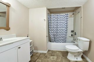 Photo 26: 10 Martha's Meadow Bay NE in Calgary: Martindale Detached for sale : MLS®# A1124430