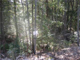Photo 3: 84 Anglemont Way in Anglemont: North Shuswap Land Only for sale (Shuswap)  : MLS®# 10058557
