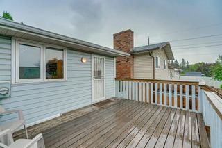 Photo 26: 6807 24 Avenue NE in Calgary: Pineridge Detached for sale : MLS®# C4258740