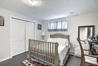 Photo 44: 85 SHERWOOD Square NW in Calgary: Sherwood Detached for sale : MLS®# A1130369
