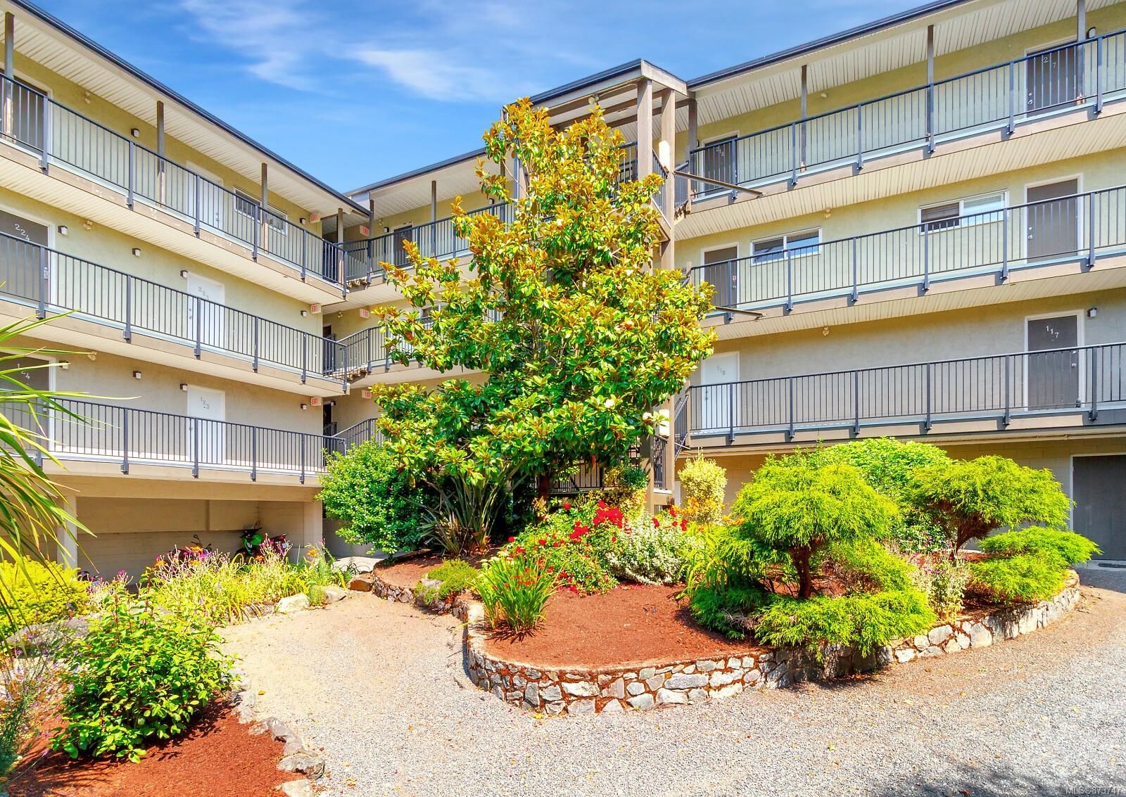 Main Photo: 214 991 Cloverdale Ave in : SE Quadra Condo for sale (Saanich East)  : MLS®# 873747