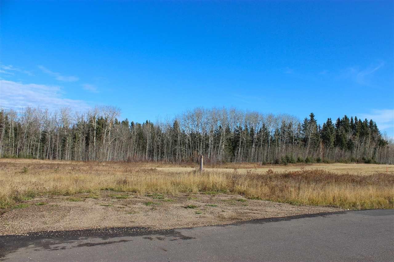 Main Photo: 63223 RR 432 #2: Rural Bonnyville M.D. Rural Land/Vacant Lot for sale : MLS®# E4177318