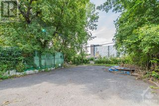 Photo 8: 250 RUSSELL AVENUE in Ottawa: Multi-family for sale : MLS®# 1259152