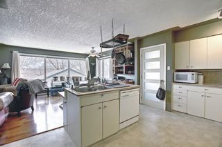 Photo 4: 1435 16 Street NE in Calgary: Mayland Heights Detached for sale : MLS®# A1099048