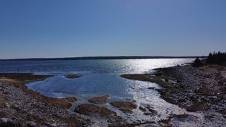 Photo 10: 2722 Sandy Point Road in Sandy Point: 407-Shelburne County Residential for sale (South Shore)  : MLS®# 202105908