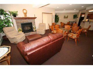 Photo 18: 314 72 QUIGLEY Drive: Cochrane Condo for sale : MLS®# C3477062