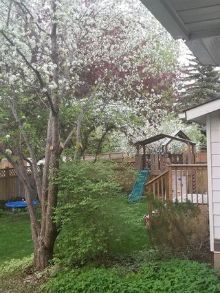 Photo 49: 704 Willingdon Boulevard SE in Calgary: Willow Park Detached for sale : MLS®# A1070574