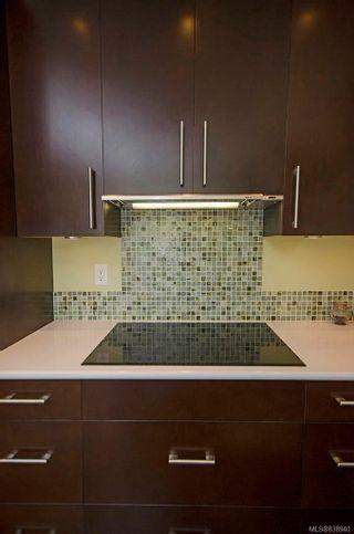 Photo 16: 795 Del Monte Pl in Saanich: SE Cordova Bay House for sale (Saanich East)  : MLS®# 838940