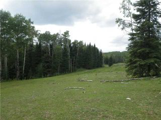Photo 14: 2 miles west of Dartique Hall in COCHRANE: Rural Rocky View MD Rural Land for sale : MLS®# C3545361