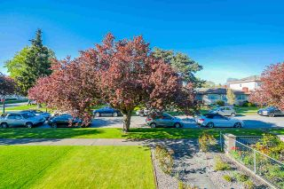 Photo 25: 320 E 54TH Avenue in Vancouver: South Vancouver House for sale (Vancouver East)  : MLS®# R2571902
