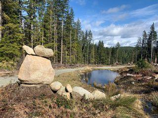 Photo 9: 3333 Granite Bay Rd in : Isl Quadra Island Land for sale (Islands)  : MLS®# 871194