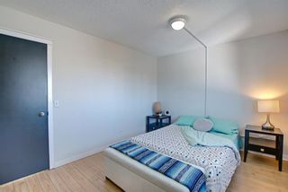 Photo 20: 66 Erin Green Way SE in Calgary: Erin Woods Detached for sale : MLS®# A1094602