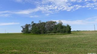 Photo 15: Mapes Acreage in Dundurn: Lot/Land for sale (Dundurn Rm No. 314)  : MLS®# SK821346