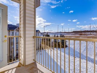 Photo 20: 420 5000 SOMERVALE Court SW in Calgary: Somerset Apartment for sale : MLS®# C4221237