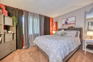 Photo 13: 39 Erin Green Way SE in Calgary: Erin Woods Detached for sale : MLS®# A1118796