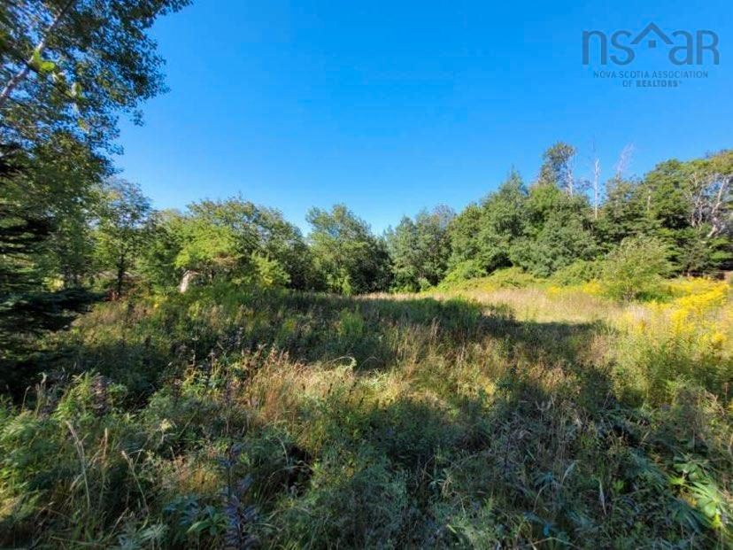 Main Photo: Lot Lighthouse Road in Bay View: 401-Digby County Vacant Land for sale (Annapolis Valley)  : MLS®# 202119924