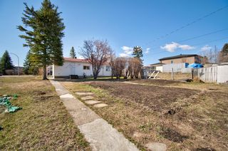Photo 6: 7724 46 Avenue NW in Calgary: Bowness Detached for sale : MLS®# A1098212
