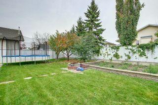 Photo 46: 8626 159A Avenue in Edmonton: Zone 28 House for sale : MLS®# E4265710