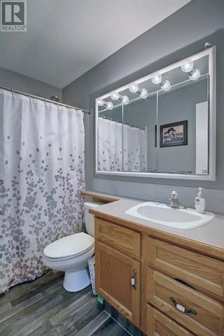 Photo 25: 95 Castle Crescent in Red Deer: House for sale : MLS®# A1144675