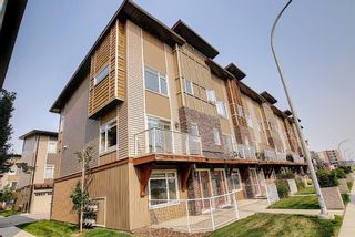 Main Photo: 21 Skyview Point Link NE in Calgary: Skyview Ranch Row/Townhouse for sale : MLS®# A1132691