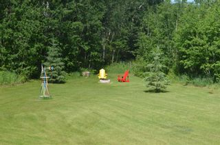 Photo 34: 472016 RGE RD 241: Rural Wetaskiwin County House for sale : MLS®# E4242573