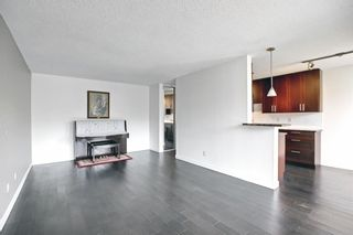 Photo 9: 303 4455A Greenview Drive NE in Calgary: Greenview Apartment for sale : MLS®# A1108022