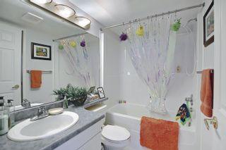 Photo 31: 302 8715 82 Avenue in Edmonton: Zone 17 Condo for sale : MLS®# E4248630