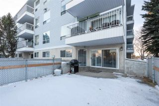 Photo 7: 116 15503 106 Street in Edmonton: Zone 27 Condo for sale : MLS®# E4223894