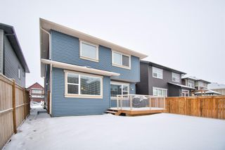 Photo 37: 10 Kingsbury Close SE: Airdrie Detached for sale : MLS®# A1059549