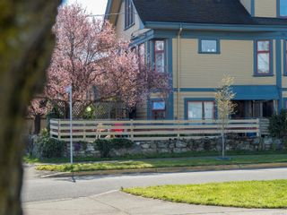 Photo 8: 101 Ontario St in : Vi James Bay Multi Family for sale (Victoria)  : MLS®# 870902