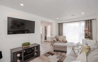 Photo 6: 377 Stouffer St in Whitchurch-Stouffville: Stouffville Freehold for sale : MLS®# N5310013