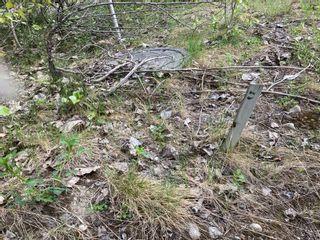 Photo 4: Lot 5 McBride: Blind Bay Land Only for sale (Shuswap)  : MLS®# 10231300
