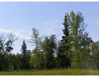 Photo 7: SW COR TWP RD 534 & RR 222: Rural Strathcona County Rural Land/Vacant Lot for sale : MLS®# E4251108